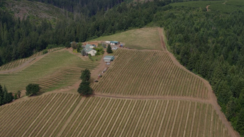 5.7K stock footage aerial video orbit around grapevines and winery, Hood River, Oregon Aerial Stock Footage | DX0001_000367