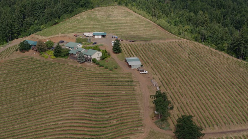 5.7K aerial video flyby the winery and vineyards on a hilltop surrounded by trees, Hood River, Oregon Aerial Stock Footage | DX0001_000369