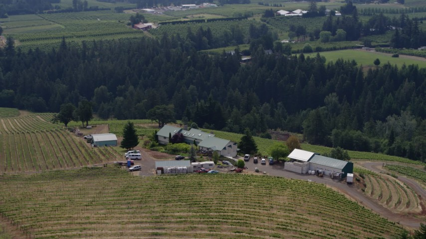 5.7K aerial video orbit the Phelps Creek Vineyards in Hood River, Oregon Aerial Stock Footage | DX0001_000373