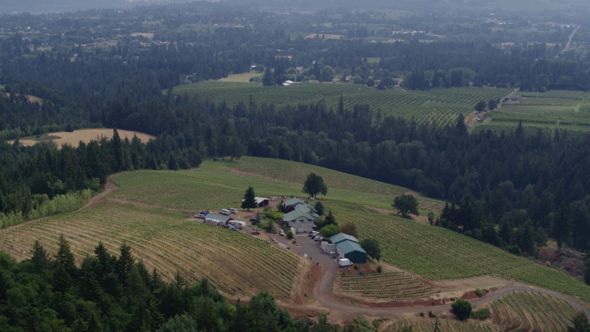 5.7K stock footage aerial video of orbiting Phelps Creek Vineyards in Hood River, Oregon Aerial Stock Footage | DX0001_000376