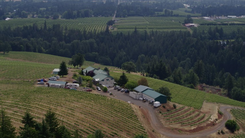 6k drone stock footage aerial video of a wide orbit of the Phelps Creek Vineyards on a hill in Hood River, Oregon Aerial Stock Footage | DX0001_000380