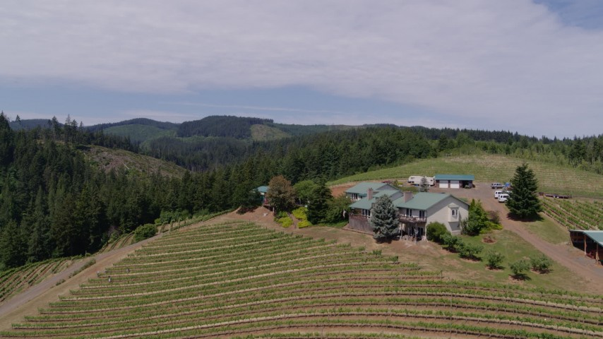 5.7K aerial video flying over grapevines and winery buildings at Phelps Creek Vineyards in Hood River, Oregon Aerial Stock Footage | DX0001_000399
