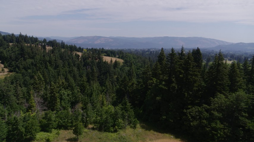 5.7K stock footage aerial video of flying over evergreen trees in Hood River, Oregon Aerial Stock Footage | DX0001_000414