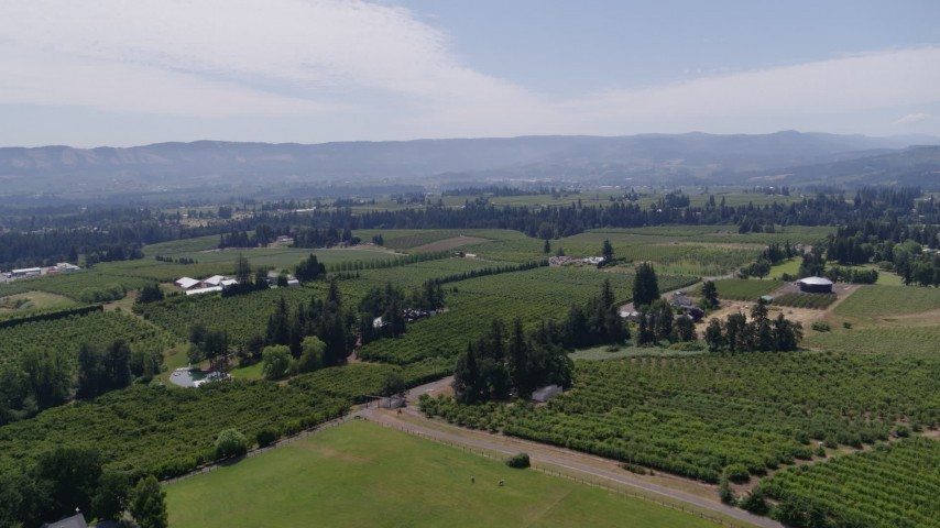 5.7K aerial video of flying over grapevines at Phelps Creek Vineyards toward orchards, Hood River, Oregon Aerial Stock Footage | DX0001_000420
