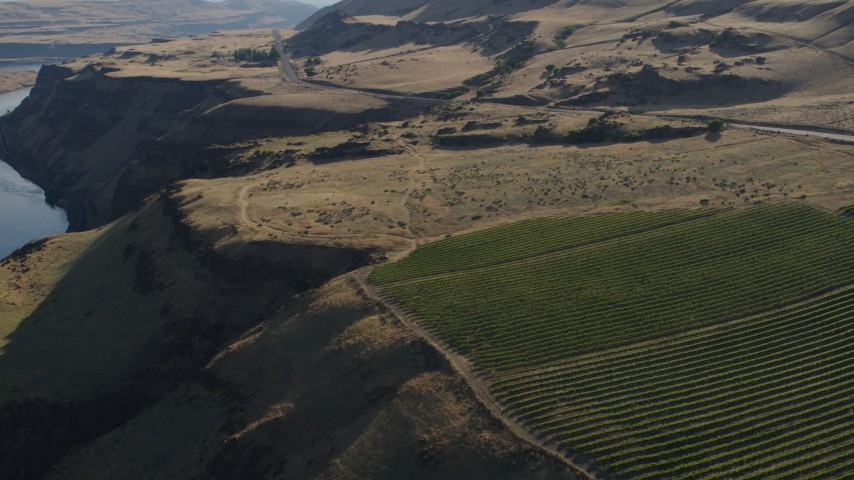 5.7K stock footage aerial video fly over vineyard toward Lewis and Clark Highway in Goldendale, Washington Aerial Stock Footage   DX0001_000499