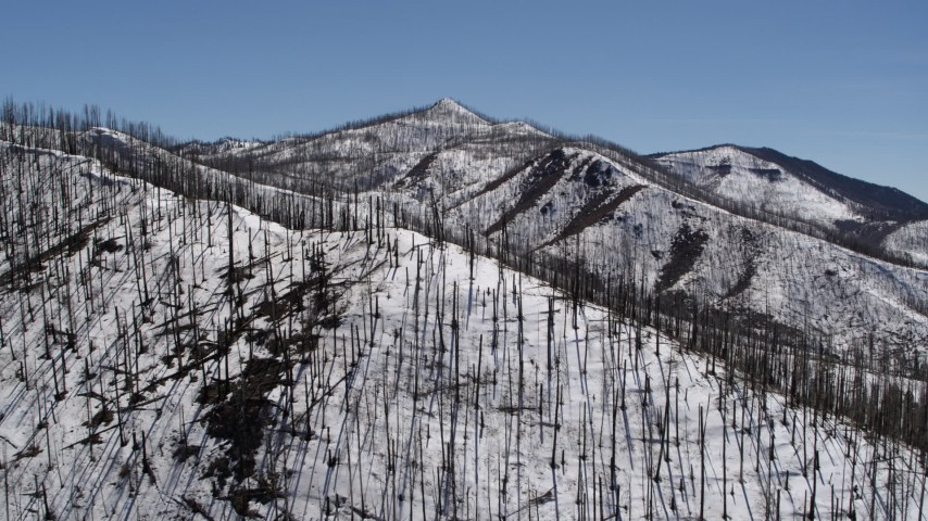 5.7K stock footage aerial video of flying away from a snowy mountain slope with dead trees, New Mexico Aerial Stock Footage | DX0002_134_027