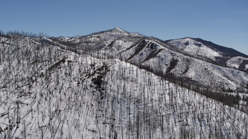 5.7K stock footage aerial video of a reverse view of a snowy mountain slope with dead trees, New Mexico Aerial Stock Footage | DX0002_134_028