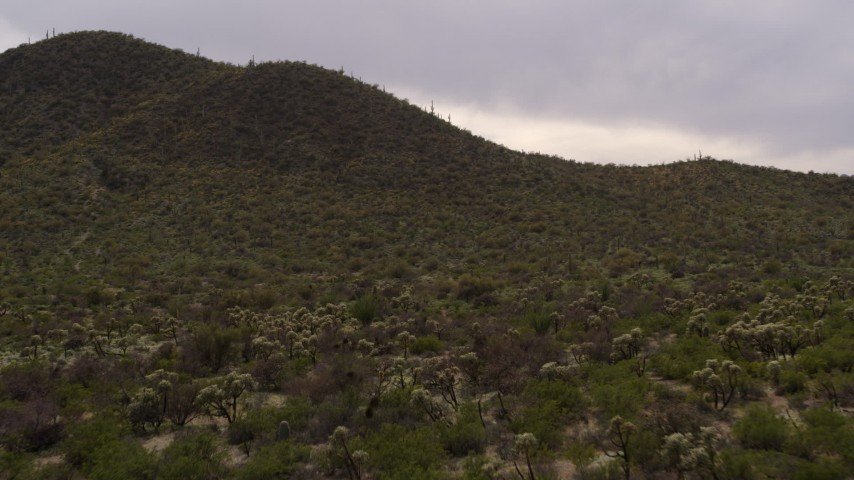5.7K stock footage aerial video fly low to approach a small peak with cactus plants in Tucson, Arizona Aerial Stock Footage | DX0002_145_001