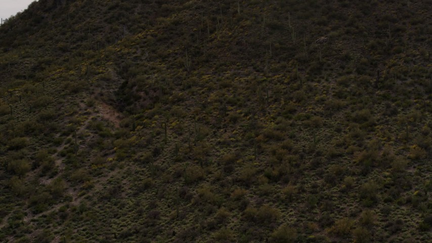 5.7K stock footage aerial video approach a small peak with cactus plants in Tucson, Arizona Aerial Stock Footage | DX0002_145_005