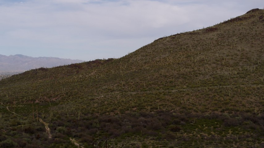 5.7K stock footage aerial video of flying away from cactus and vegetation on Sentinel Peak in Tucson, Arizona Aerial Stock Footage | DX0002_145_014