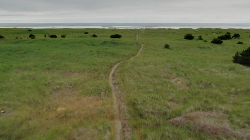 4K stock footage aerial video of flying low over a path through tall grass in Long Beach, Washington Aerial Stock Footage | DX0002_148_013