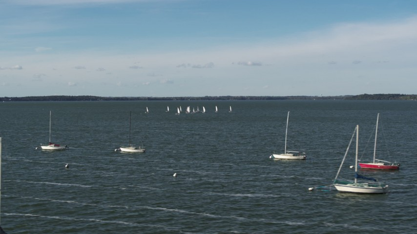 5.7K stock footage aerial video a low orbit of a group of sailboats on Lake Mendota, Madison, Wisconsin Aerial Stock Footage | DX0002_160_039