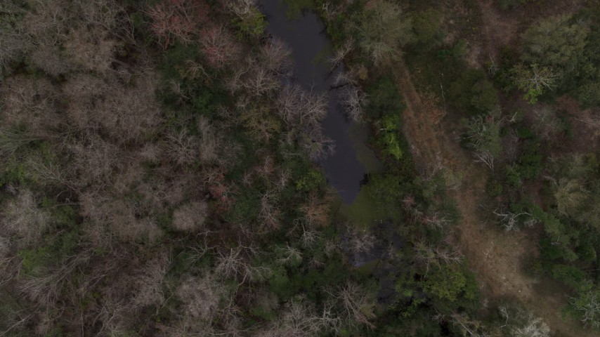 5.7K stock footage aerial video flying above a narrow river in a forest, Orlando, Florida Aerial Stock Footage | DX0003_234_045
