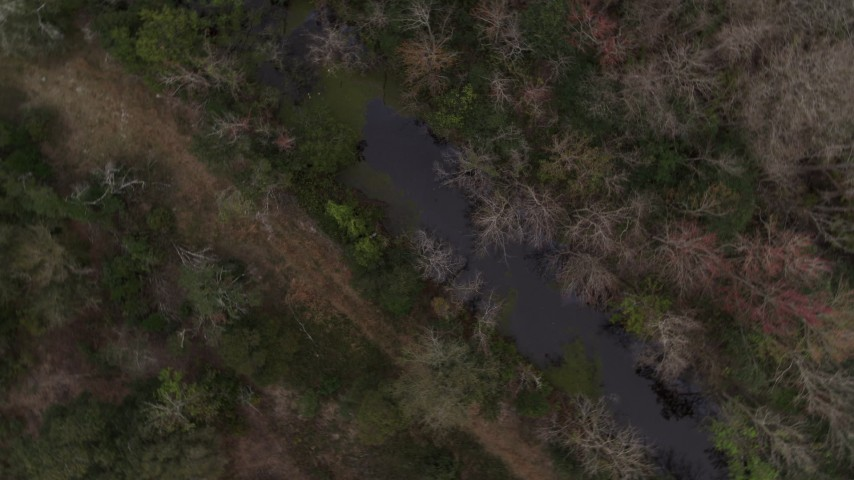 5.7K stock footage aerial video of circling above a narrow forest river, Orlando, Florida Aerial Stock Footage   DX0003_234_047