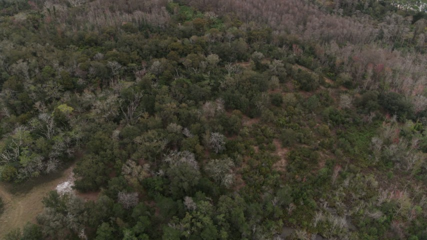 5.7K stock footage aerial video of flying away from forest trees, Orlando, Florida Aerial Stock Footage | DX0003_234_059
