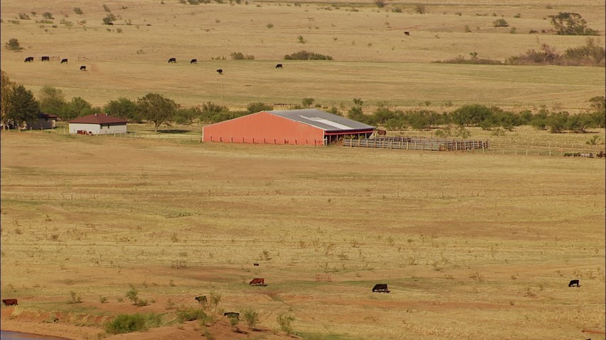 1080 stock footage aerial video of cows grazing near a barn in Oklahoma Aerial Stock Footage   HDA12_117