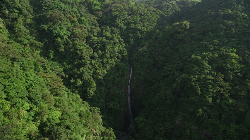 Waterfall and Dense Forest in the Mountains of Hong Kong Island Aerial Stock Footage | SS01_0109