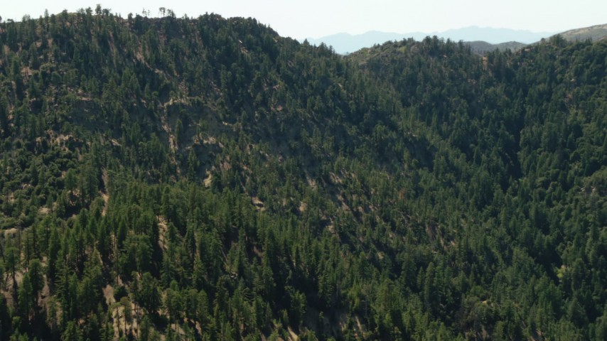 1080 stock footage aerial video of a mountain with evergreen trees, Los Padres National Forest, California Aerial Stock Footage   TS01_031