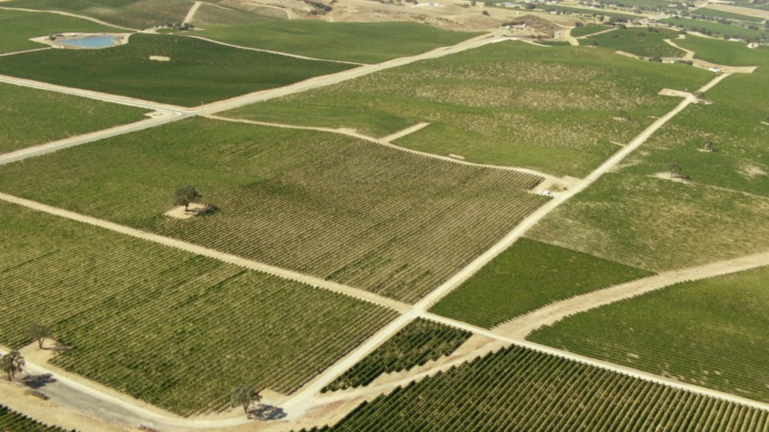 1080 stock footage aerial video of flying over vineyards and fields; Paso Robles, California Aerial Stock Footage | TS01_085