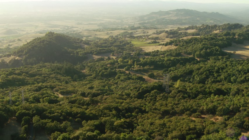 1080 stock footage aerial video of trees and hills while flying over the Sonoma Mountains, California Aerial Stock Footage | TS01_187