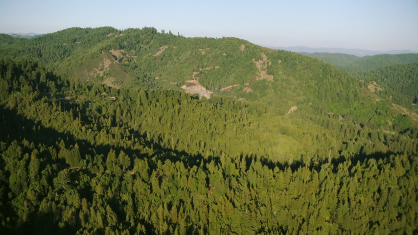 1080 stock footage aerial video of flying over forest to approach a mountain in Sonoma County, California Aerial Stock Footage | TS01_213
