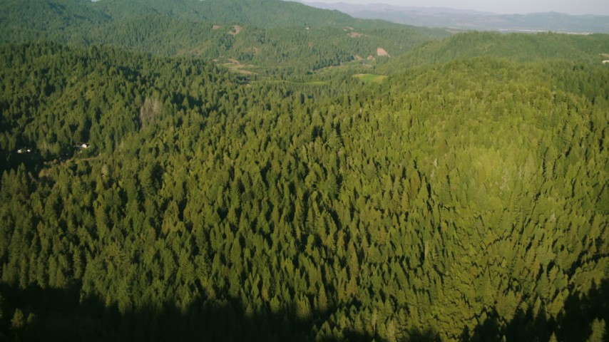 1080 stock footage aerial video tilt from bird's eye of forest to approach mountains in Sonoma County, California Aerial Stock Footage | TS01_217