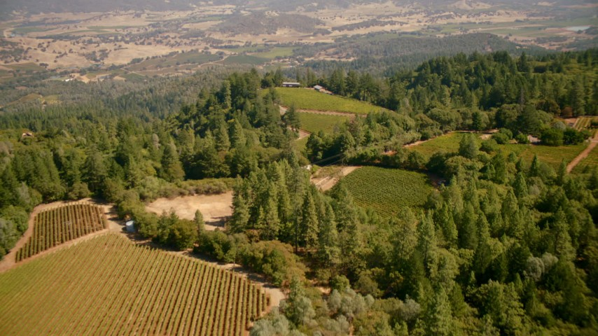1080 stock footage aerial video of hilltop vineyards in Pope Valley, California Aerial Stock Footage | TS01_243