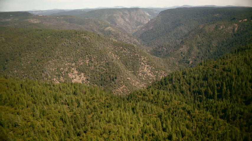 1080 stock footage aerial video fly over trees to approach tall mountains in the Sierra Nevada Mountains, California Aerial Stock Footage | TS01_283