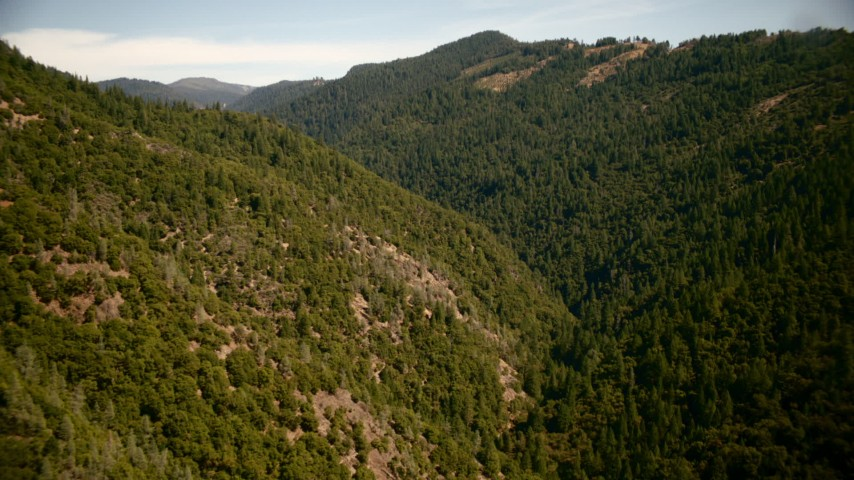 1080 stock footage aerial video of mountain slopes covered in trees in the Sierra Nevada Mountains, California Aerial Stock Footage | TS01_288