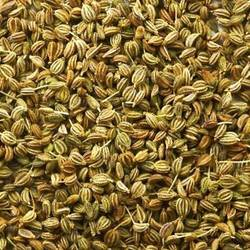 Ajwain's Raw Herb