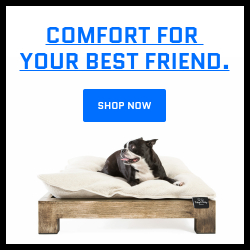 Toby & Molly Pet Bed & Frame -furniture,