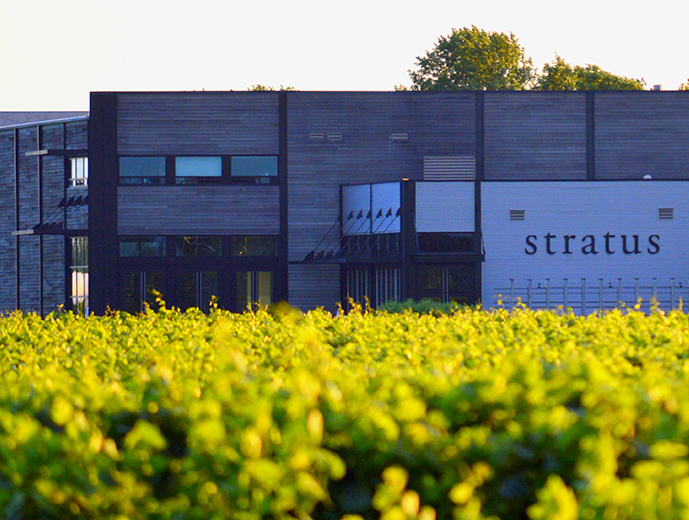 Image result for stratus winery