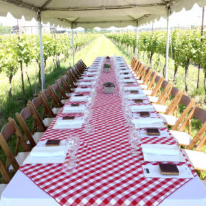 Many place settings adorn a long table set-up in the vineyard