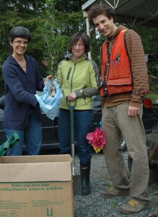 seedlingunpacking