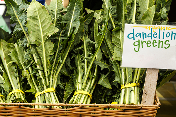 superfoods, dandelion greens