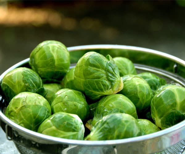 18 Delicious Fall Fruits and Vegetables-Brussels Sprouts