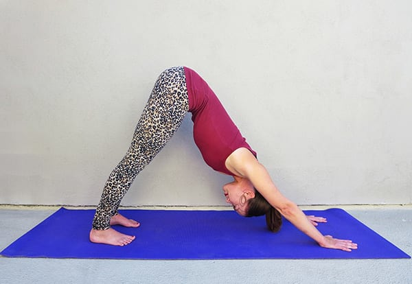 Standing Yoga Poses Downward Dog