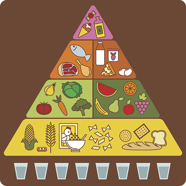 food pyramid, myplate, portion fix, containers, food groups