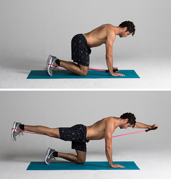 Best Ab Exercises - Band-Resisted Bird Dog