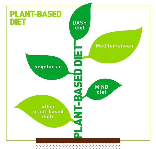Plant-Based Diet vs. Vegan