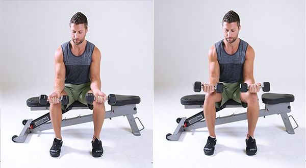 Best Exercise To Build Up Forearms