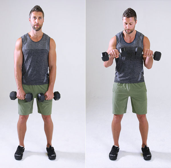 how to work the top of your forearm