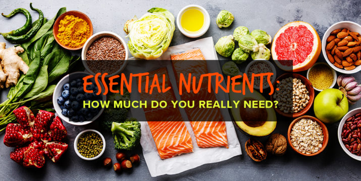 Essential Nutrients: How Much Do You Really Need?
