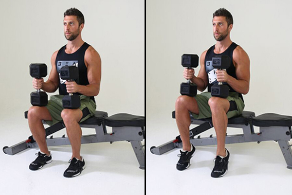 Calves Workout - Seated Calf Raise