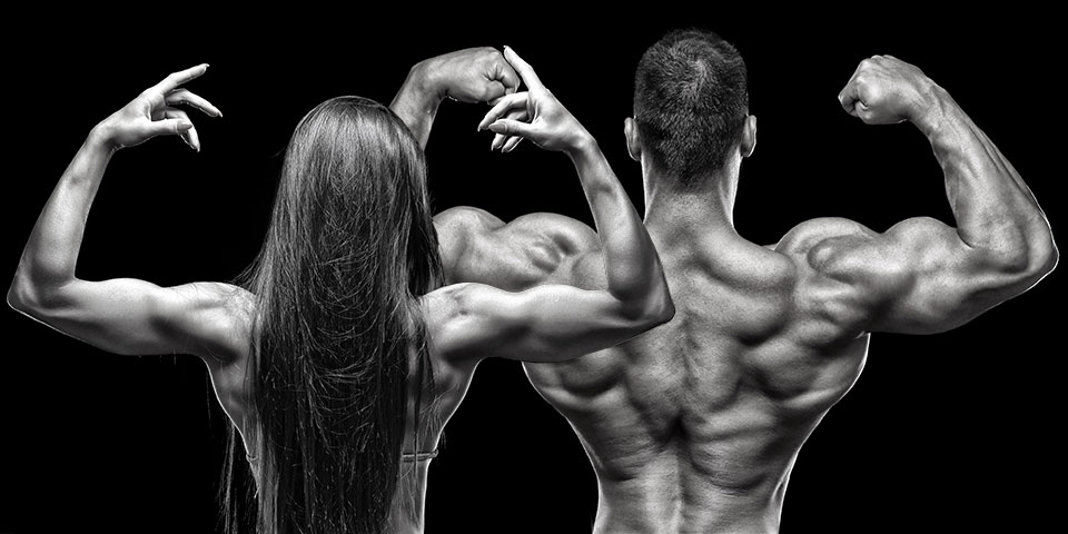 Shoulder Muscles Everything You Need To Know The Beachbody Blog