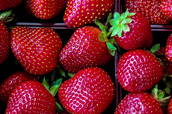Fresh strawberries in containers