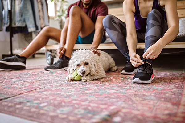 Couple with dog getting ready for a run