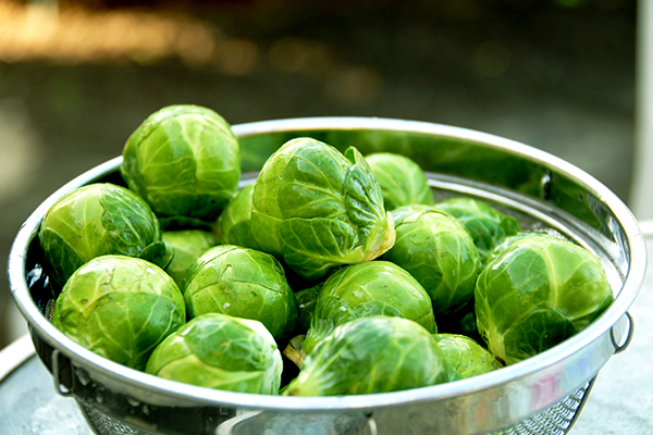Raw Brussels sprouts in a colander