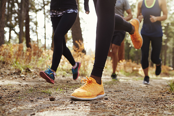 Cropped shot showing legs of people trail running