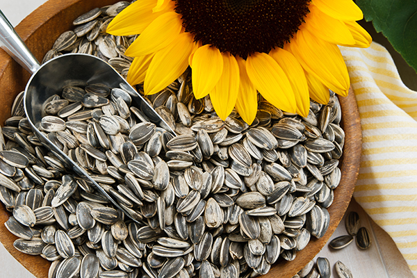 Nutritious sunflower seeds in a wood bowl.